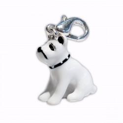 Charm dog